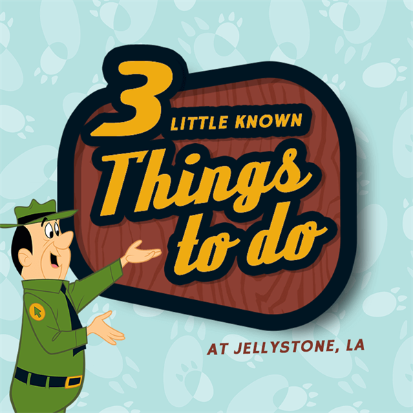 Three Little-Known Things To Do at JELLYSTONE PARK™